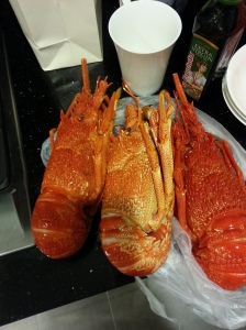 the AUD 96 lobsters